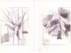 Star Tree Mountain Wave Set 06, 2013, graphite on paper, 10 x 40 inches